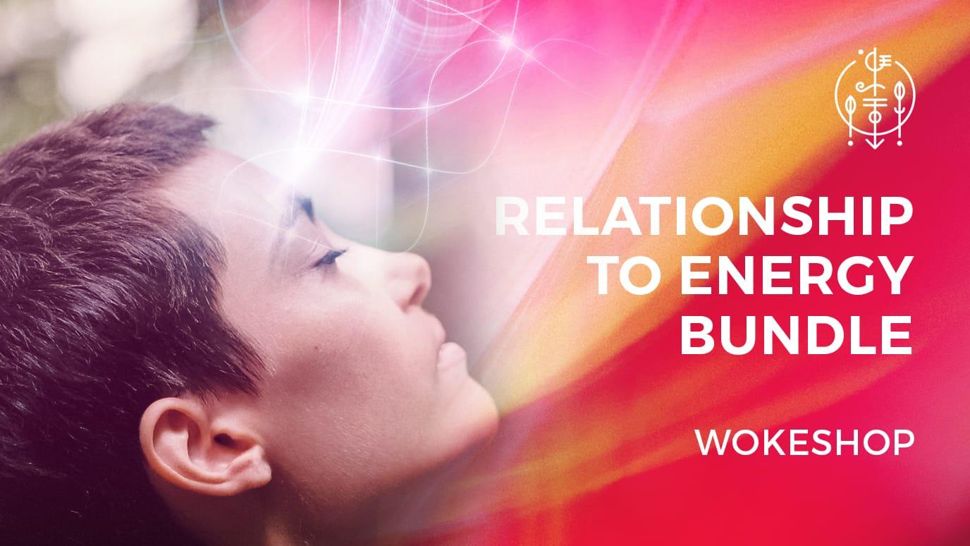 Relationship to Energy Wokeshop Bundle